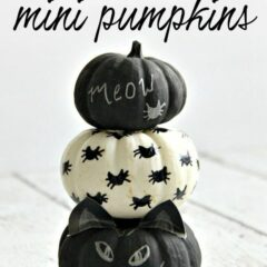 These black cat pumpkins are the perfect Halloween project for cat lovers! Learn how to make these easy no-carve chalkboard painted pumpkins. #blackcat #pumpkindecorating #pumpkin #falldecor #fallcrafts #painting #chalkboardpaint #halloween #halloweenpumpkins