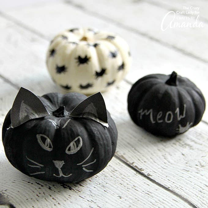 These black cat pumpkins are the perfect Halloween project for cat lovers! Learn how to make these easy no carve chalkboard painted pumpkins.