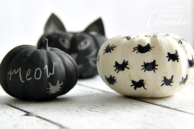 Finished black cat pumpkins