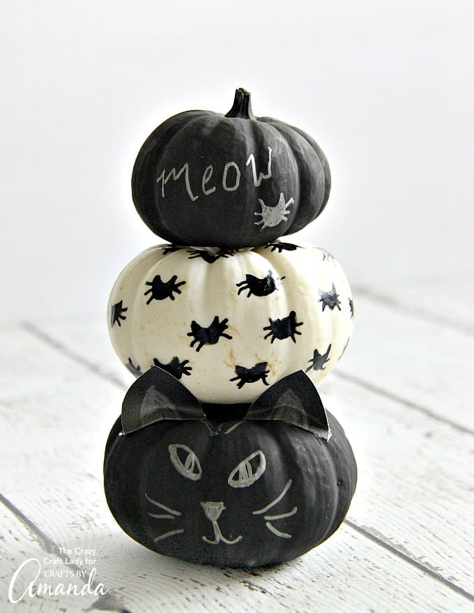 Adorable and easy Black Cat Mini Pumpkins using chalkboard paint and a paint pen!