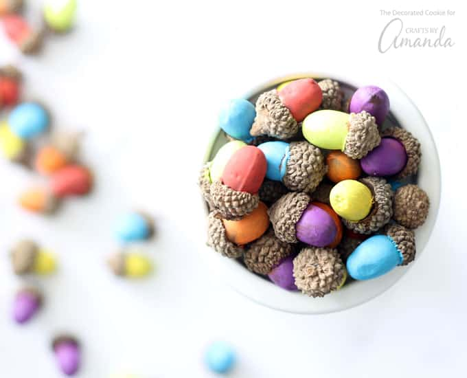 Painted acorns: paint your acorns whatever colors you desire!