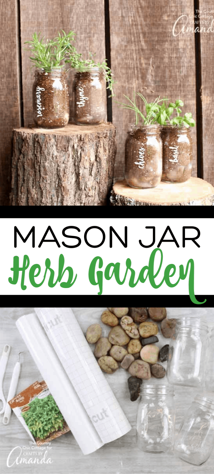 herbs growing in mason jars