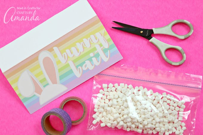 How to Make Your Own Bunny Bait Printable Easter Treat Bags