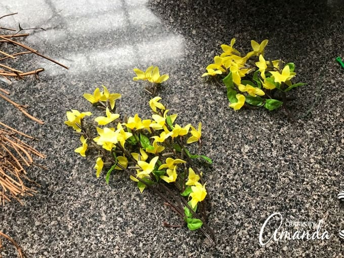 Separate the forsythia springs into two piles
