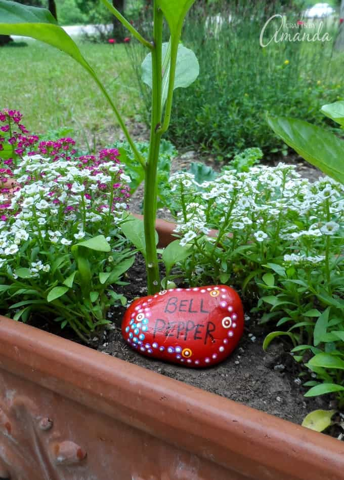 Painted Rock Garden Markers- Bell Pepper