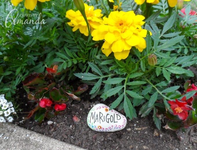 Painted Rock Garden Markers- Marigold