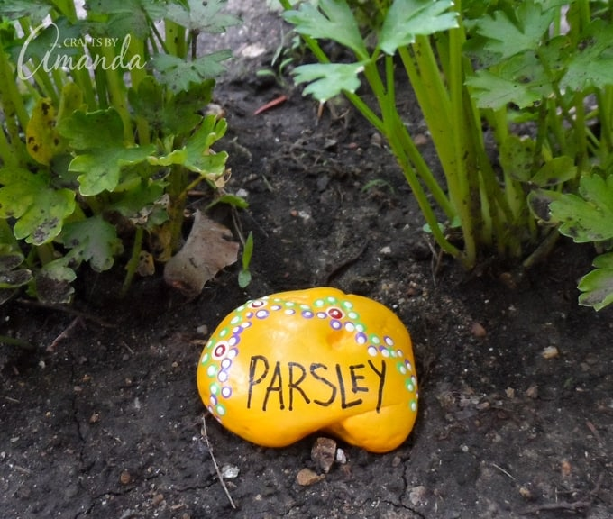 Painted Rock Garden Markers, Parsley
