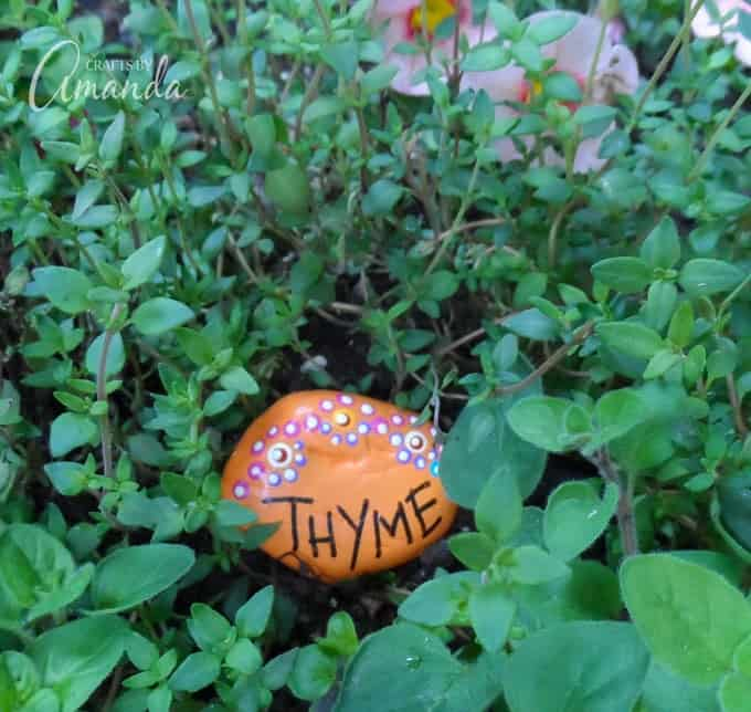 Painted Rock Garden Markers- Thyme