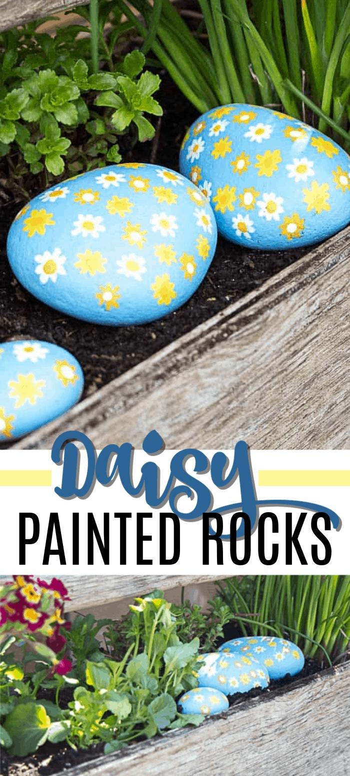 Daisy Painted Rocks