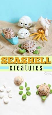 seashell creatures pin image