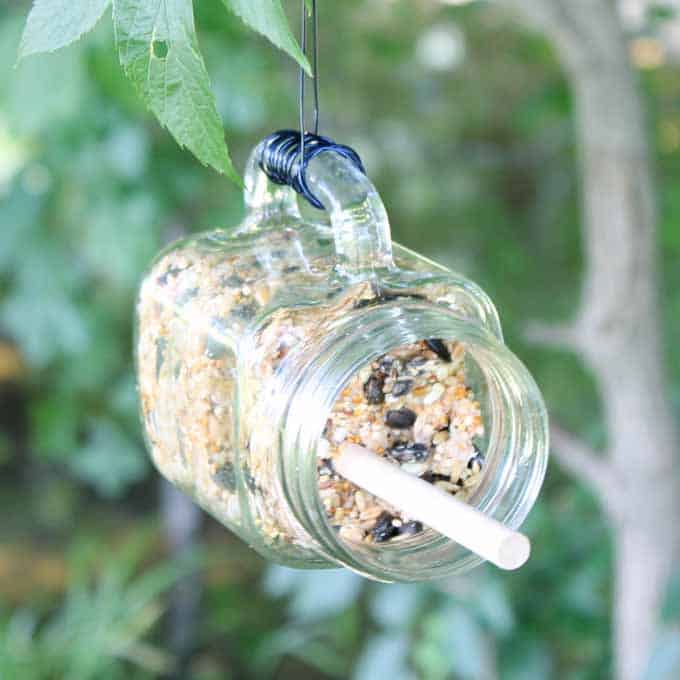 Make this mason jar bird feeder with a suet cake! An easy project that the birds will love!