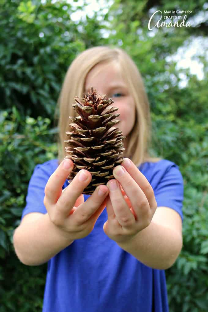 girl holding pine cone she found in scavenger hunt