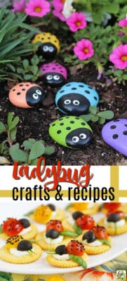 ladybug crafts and recipes pin image