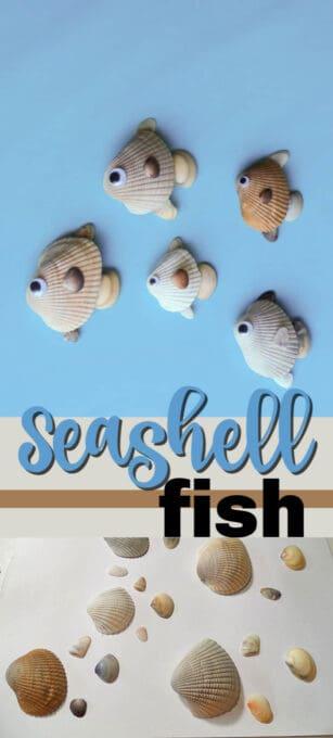 seashell fish pin image