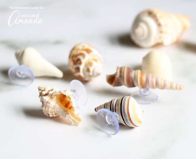 Seashell wine charms