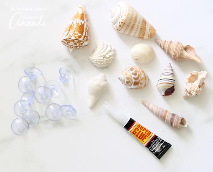 Seashells, super glue and suction cups for seashell wine charms