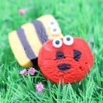 ladybug slice COOKIES