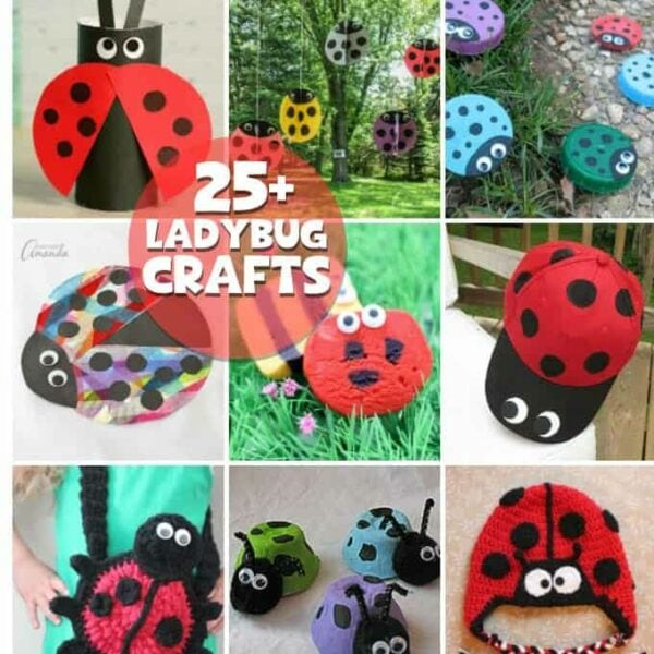 25 Ladybug Crafts and Recipes