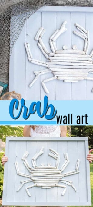 crab wall art pin image
