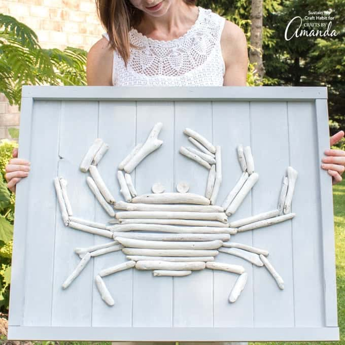 driftwood crab wall decor