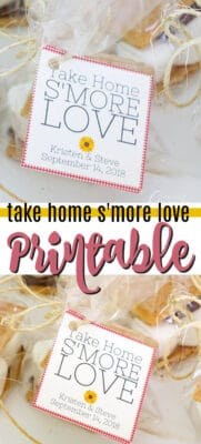 take home s'more love printable pin image
