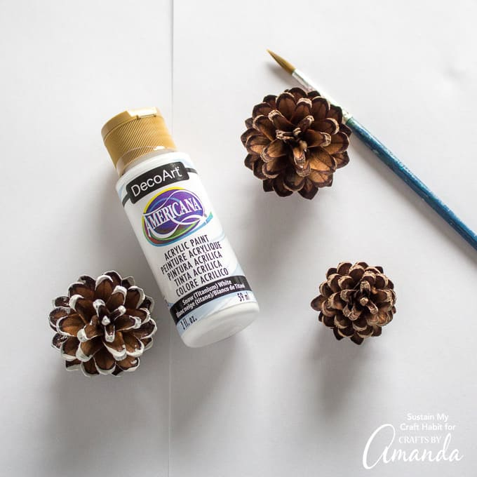 Painting pine cones white