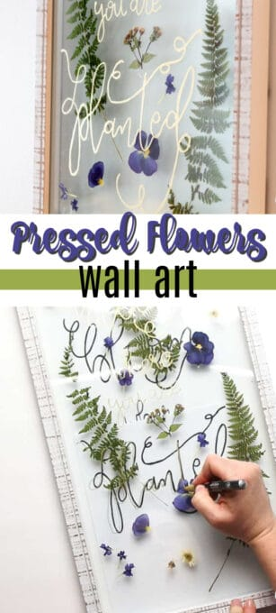 pressed flowers wall art pin image