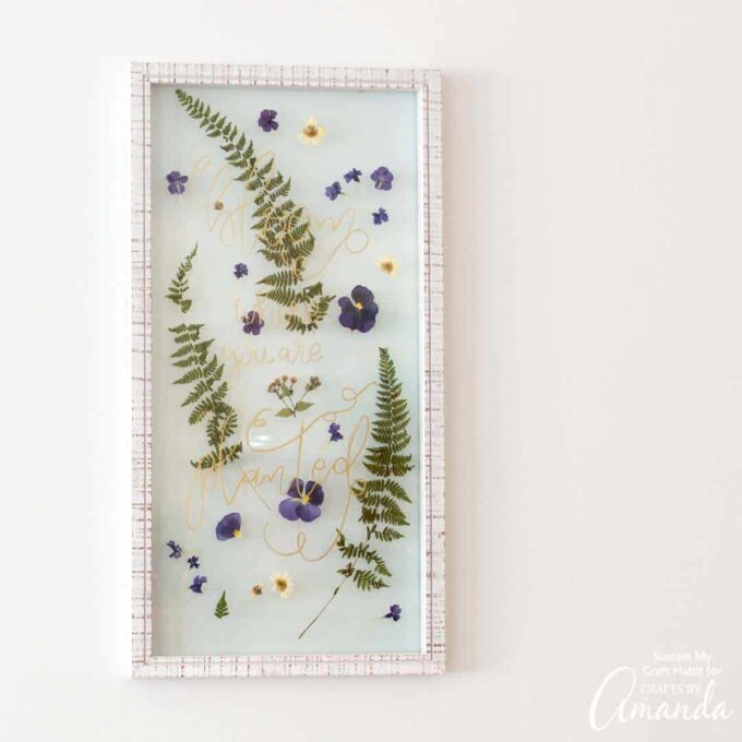 pressed flowers in a floating frame on wall