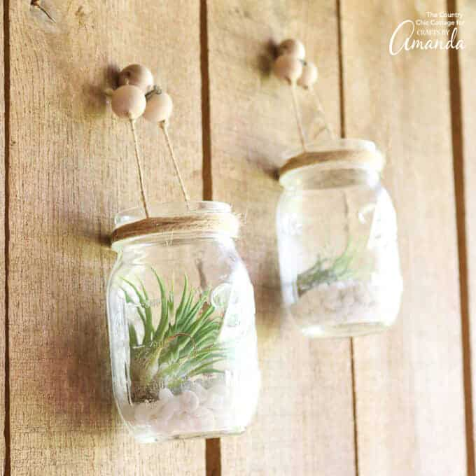 mason jars with air plants and pebbles