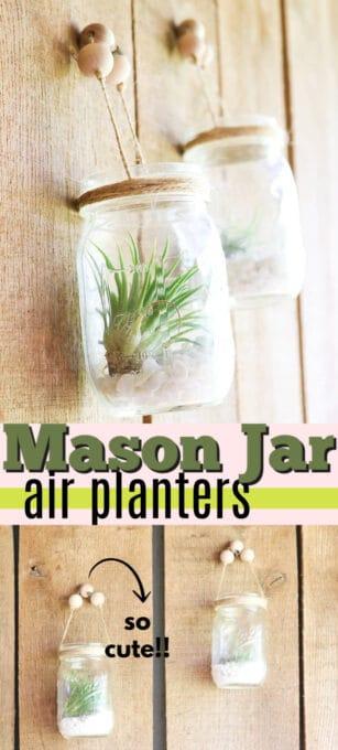 mason jar air plant holders pin image
