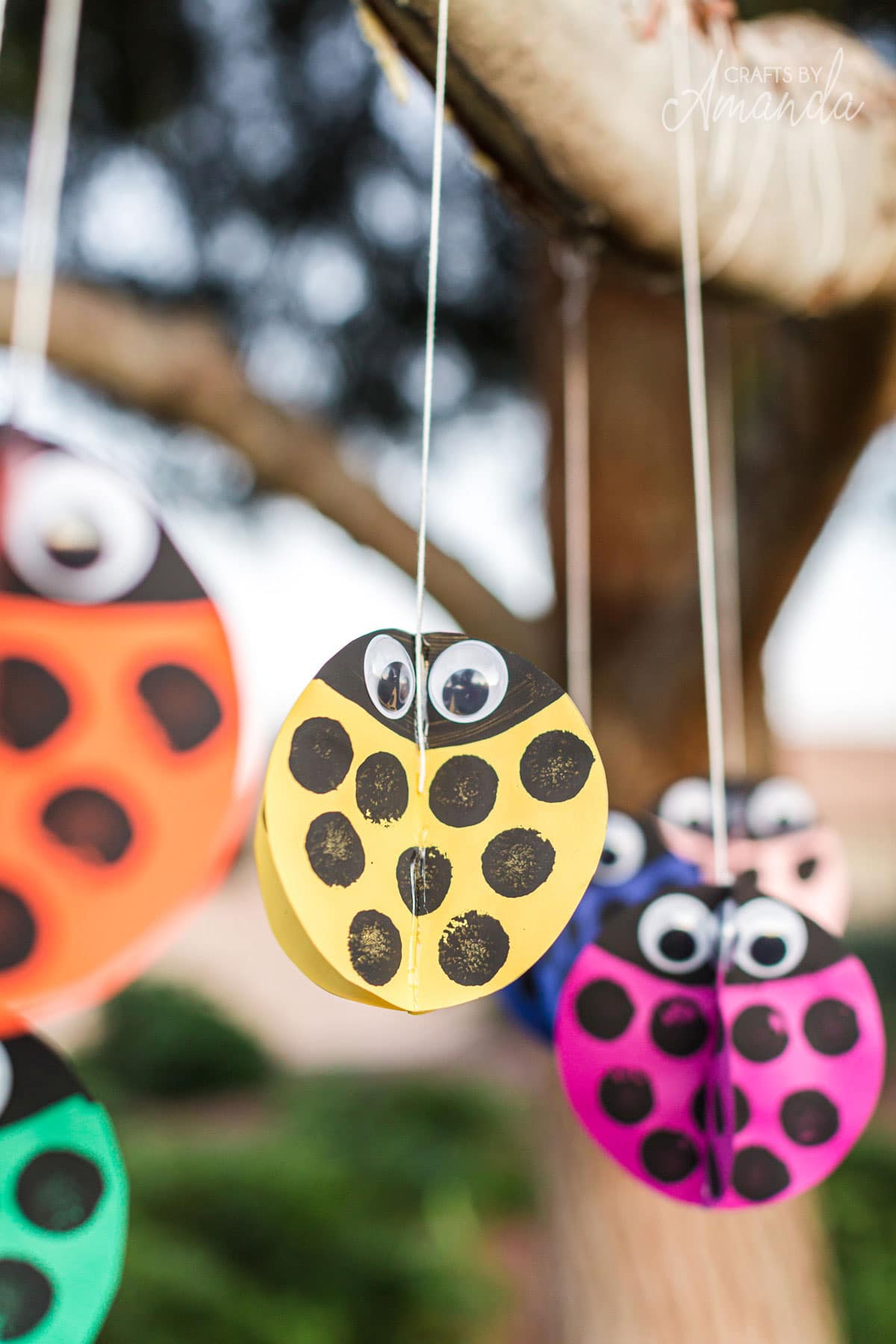 colorful paper ladybugs on string hanging in tree