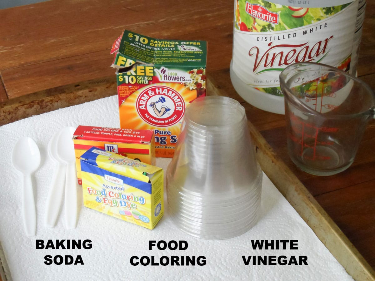 labeled supplies for vinegar and baking soda reaction experiment