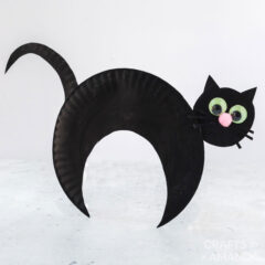 paper plate black cat on white background