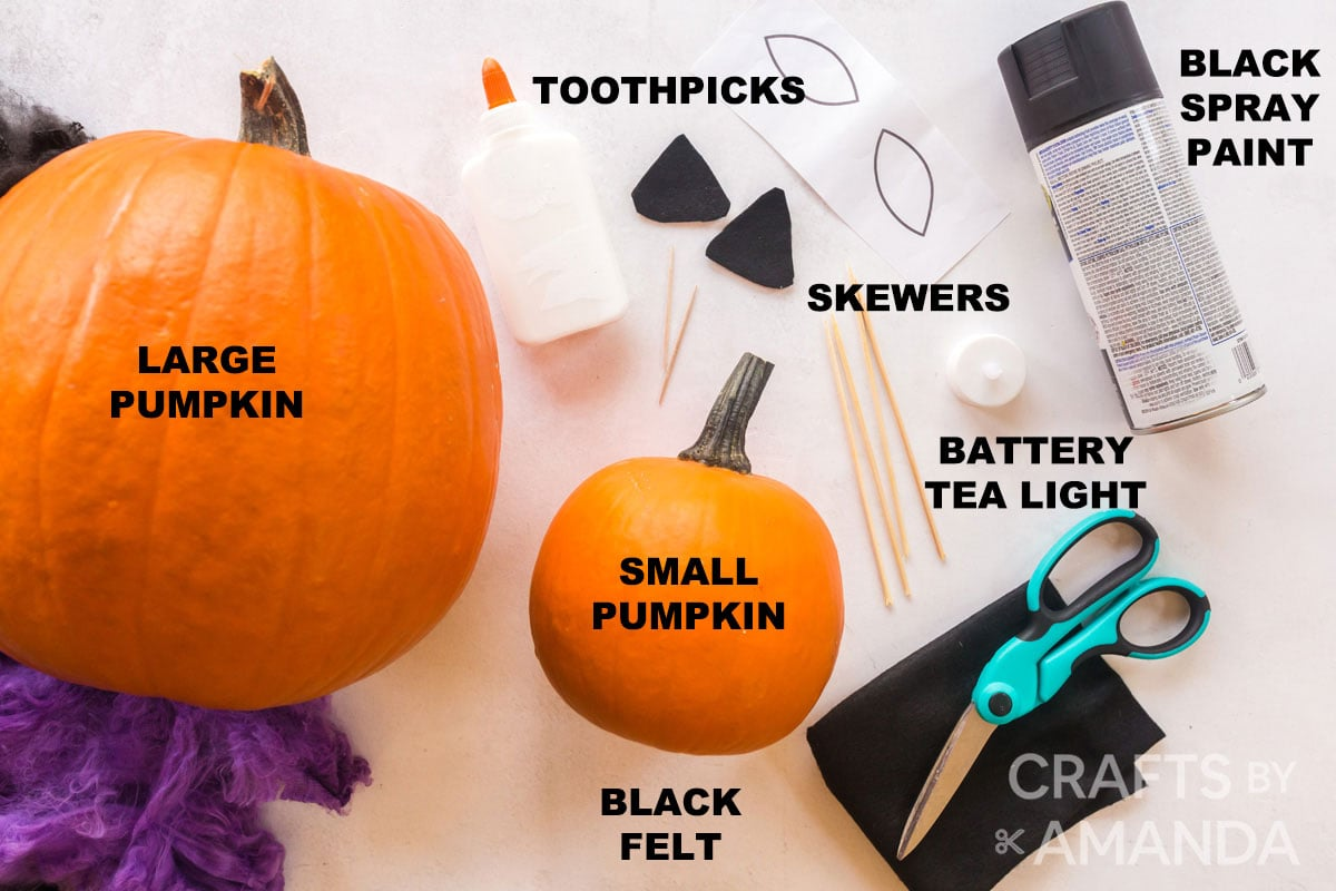 labeled supplies for making black cat pumpkin