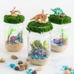 3 dinosaur terrariums
