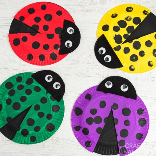 paper plate ladybugs