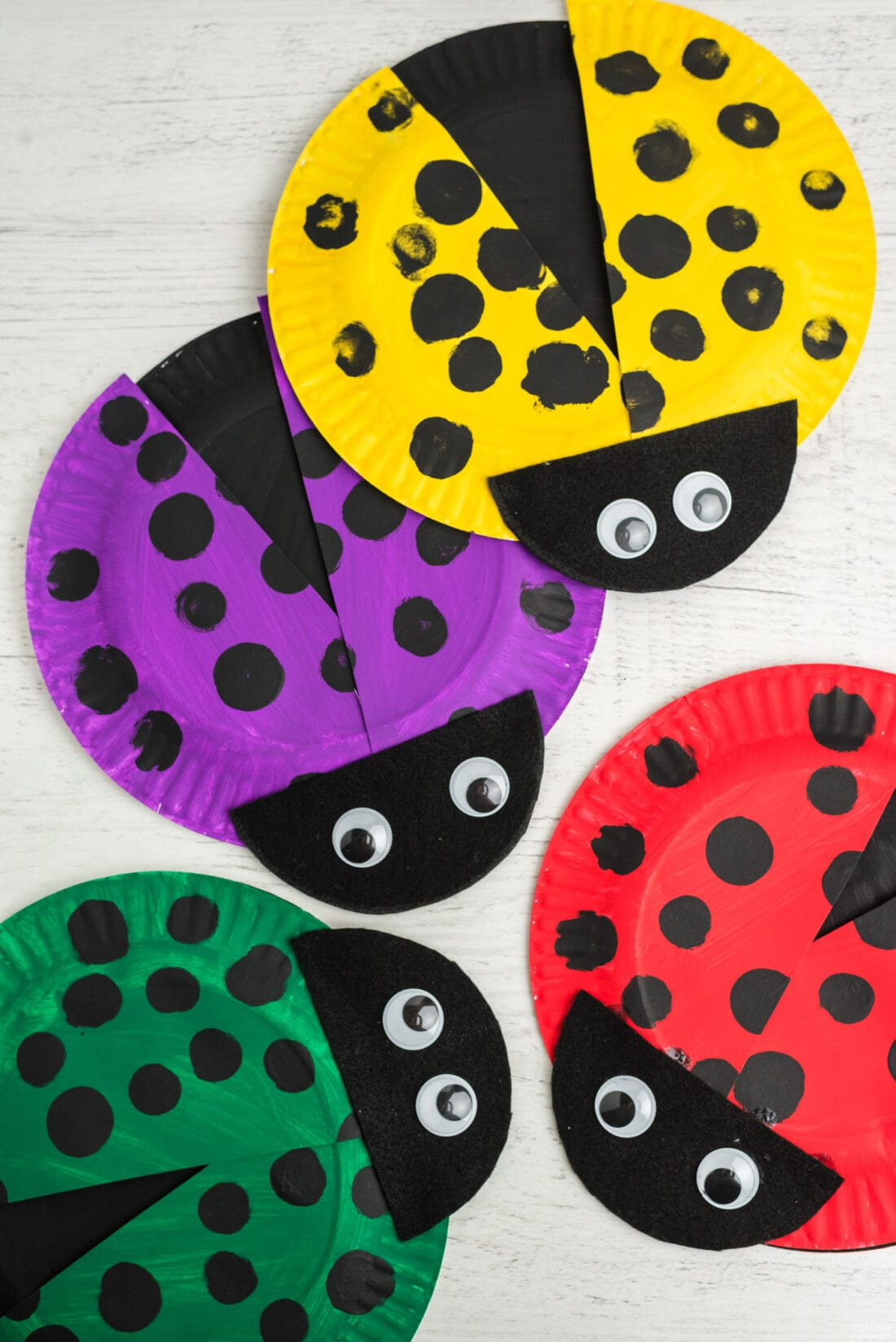 4 ladybugs made from paper plates